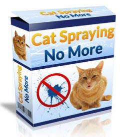 Cat Spraying no more, here's the solution